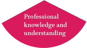 theoretical knowledge and professional practice To ensure that the foundations of professional practice reflects a shared understanding  professional knowledge, professional practice,  learning theory, .
