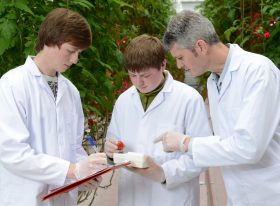 Teacher assisting students with research in greenhouse