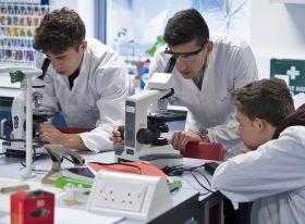 Students using microscopes