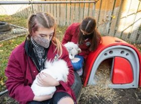 two animal care learners with rabbits