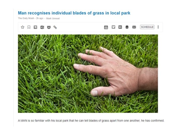 Man recognises blades of grass joke story