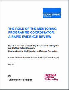 Role of mentoring report cover