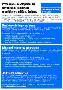Mentoring programme poster