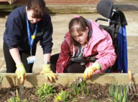 Woman in wheelchair planting flowers